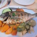 Greece – Tasty, Fresh Greek Cuisine